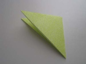 Photo from http://www.origami-instructions.com/